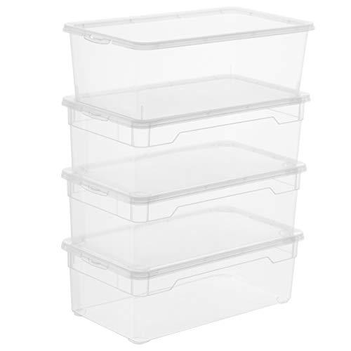 Rotho Clear Juego de 4 cajas de almacenamiento de 5l con tapa, Plástico (PP) sin BPA, transparente, 4 x 5l (33.0 x 19.0 x 11.0 cm)